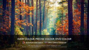 Quantum dot colour